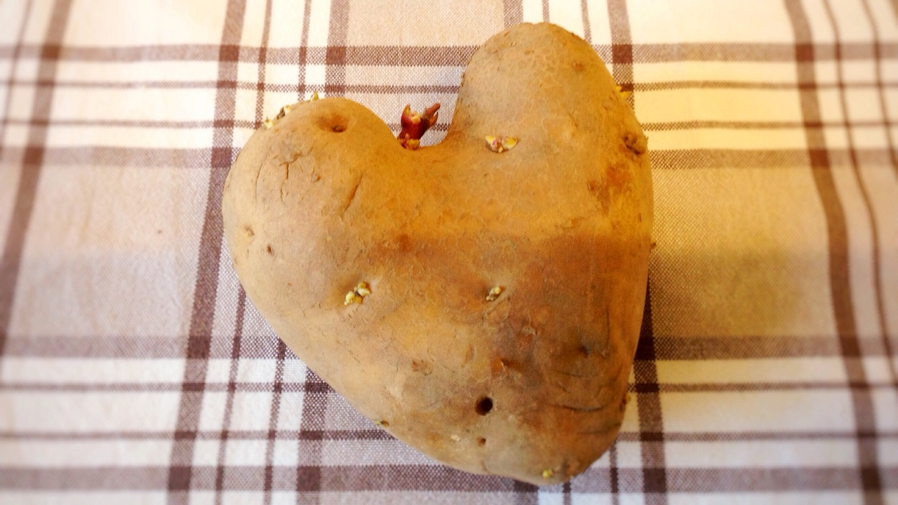 Kartoffel mon amour